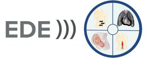 MedGlobal Partner Logo: EDE